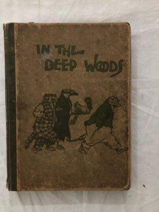 In The Deep Woods. Albert Bigelow Paine